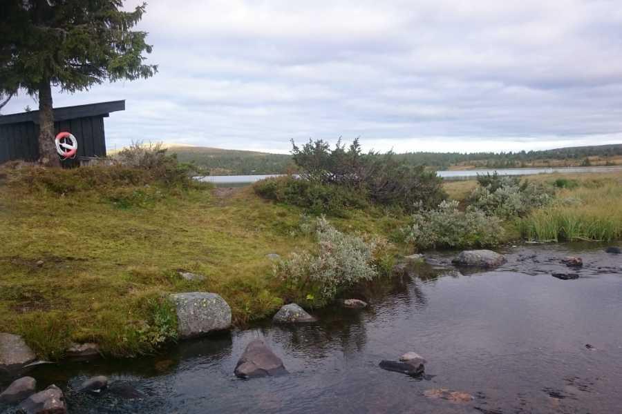 AktiviNatur.com Kajakkleie 3 timer, Mellsjøen (Nordseter)