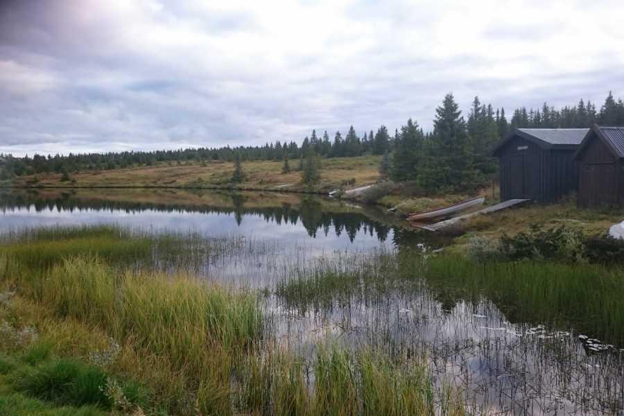 AktiviNatur.com Kanoleie Kveld, Mellsjøen (Nordseter)