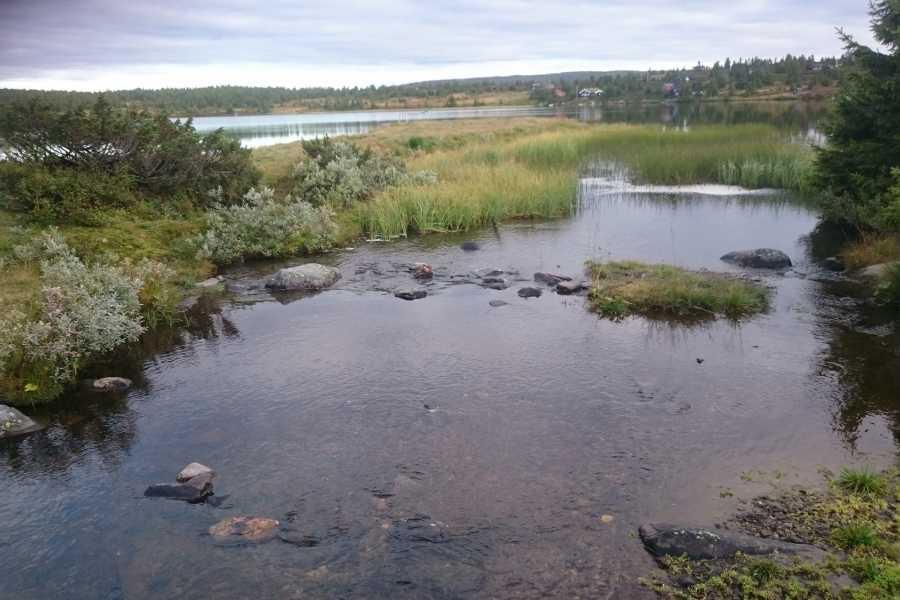 AktiviNatur.com Båtleie 3 Timer, Nevelvann (Nordseter)