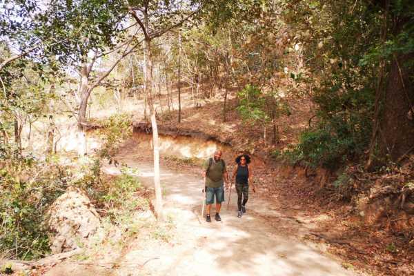 """Cerro Pelado"" Guided Hiking Challenge"