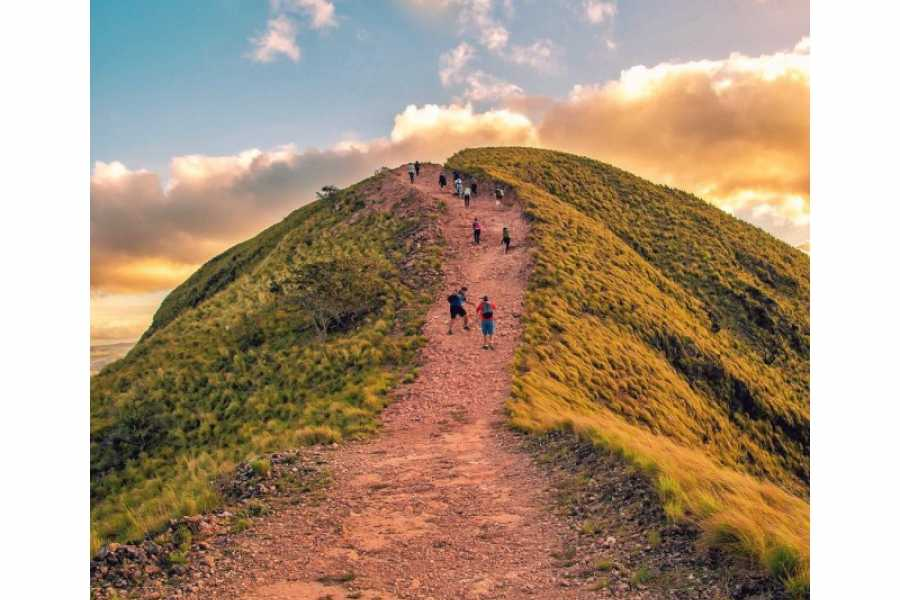 "Tour Guanacaste ""Cerro Pelado"" Guided Hiking Challenge"