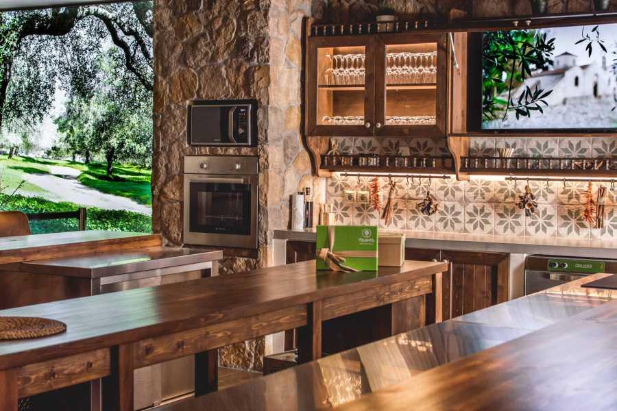 Grekaddict Olive Oil Tasting in Athens