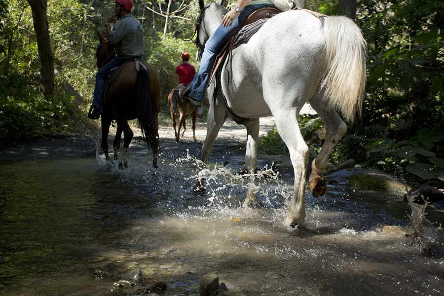 Tour Guanacaste Horseback Riding Tour Los Sueños