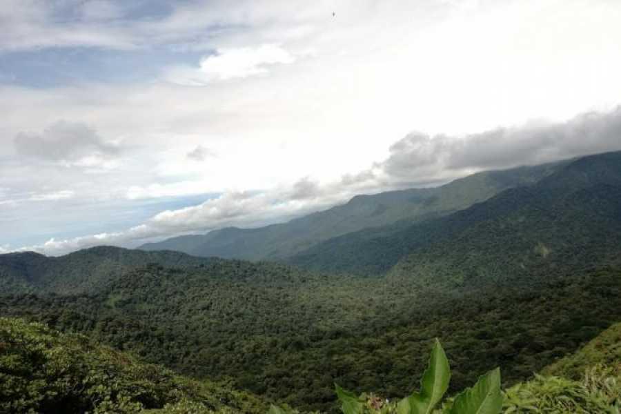Tour Guanacaste Overnight Monteverde Forest Excursion