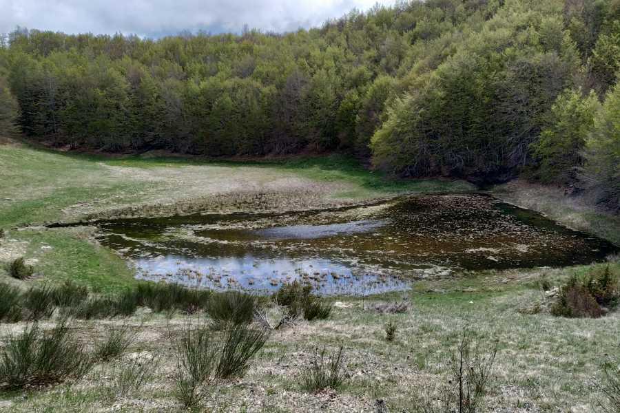 Modenatur Le antiche vie d'Acqua : Lame e Torbiere