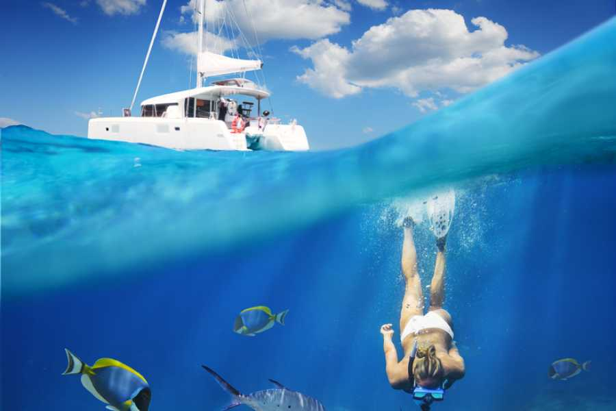 Tour Guanacaste Marlin Del Rey Catamaran Tour