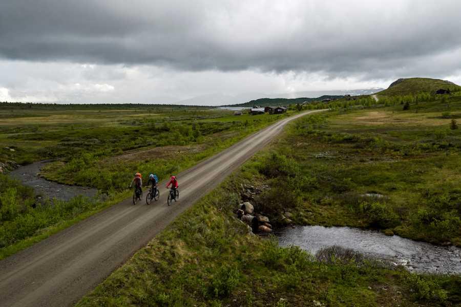 Velkommen til Vaset El-sykkel på Stølsvidda- Mjølkevegen