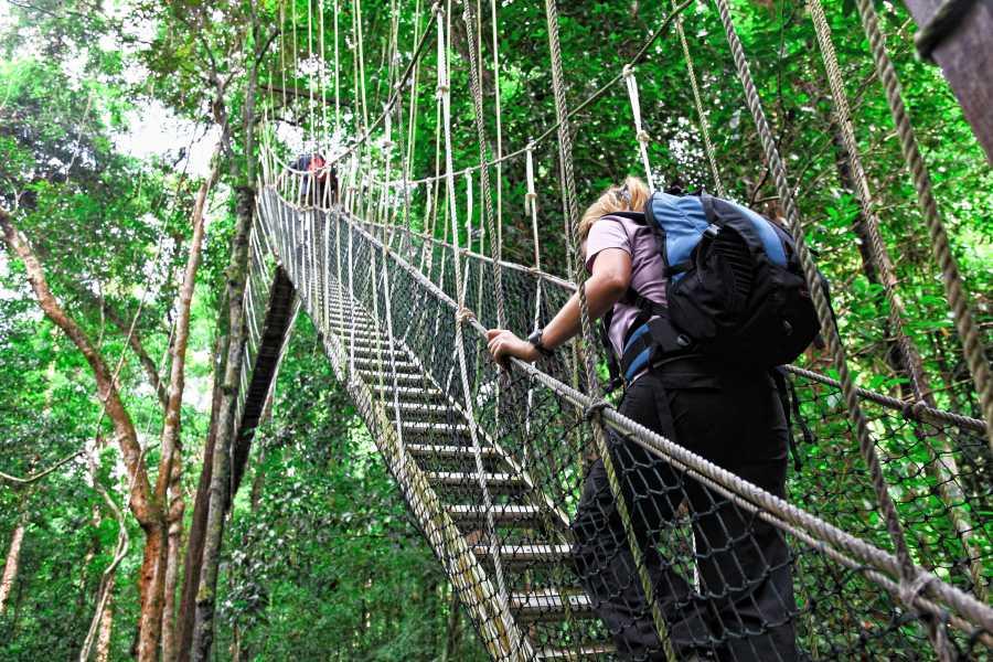 Tour Guanacaste Canopy Pura Aventura