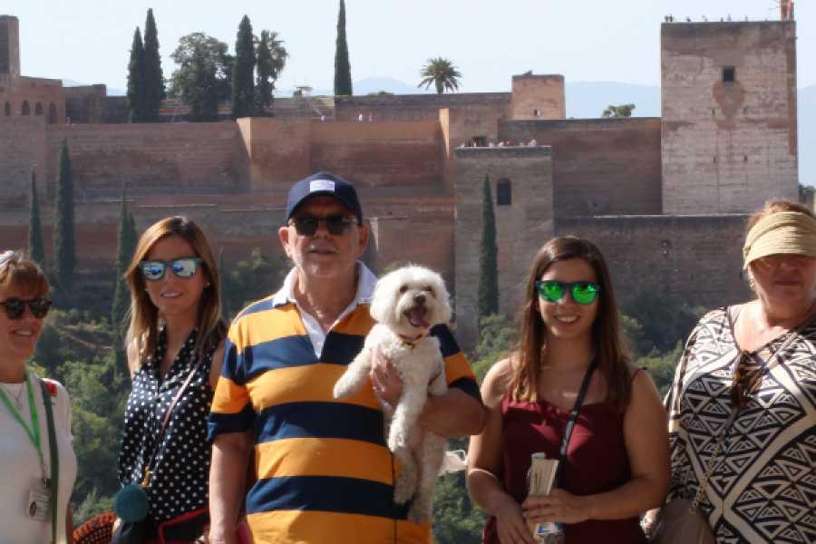 Balea Travel Visita guiada al Albaicín con perro