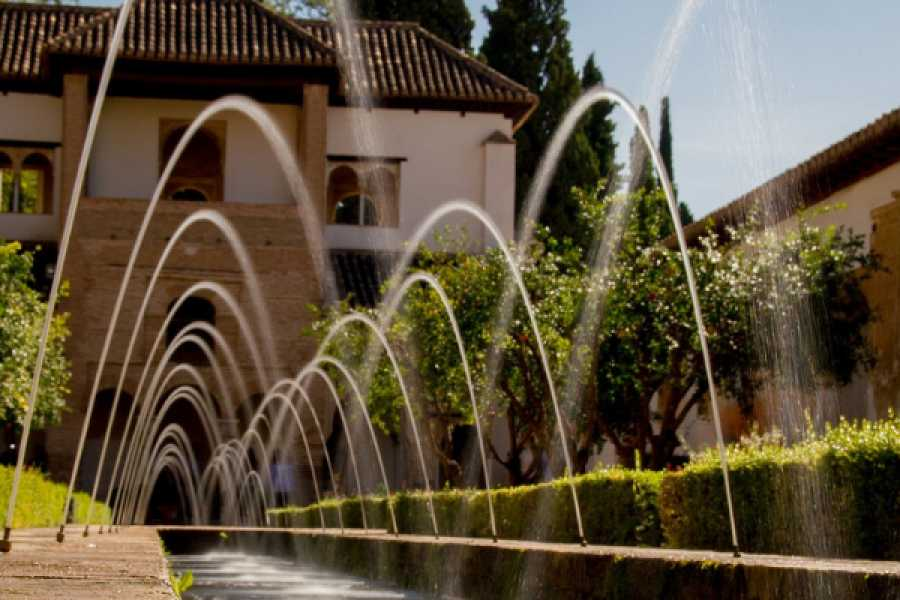 Balea Travel Alhambra guided tour premium (small groups in English)