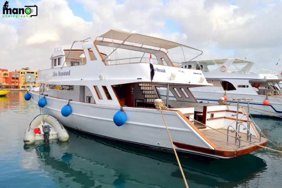 Marsa alam tours Private boat trip to dolphin house from Hurghada