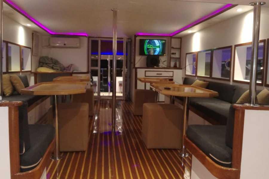 Marsa alam tours Excursion en bateau privé à la maison des dauphins d'Hurghada