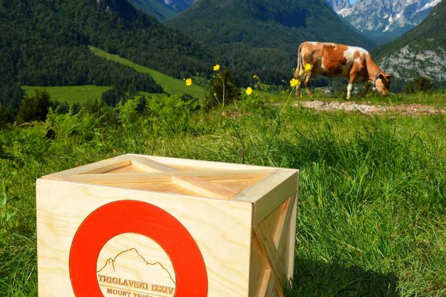Turistično društvo in Center gorskega vodništva Slovenian Alpine Museum