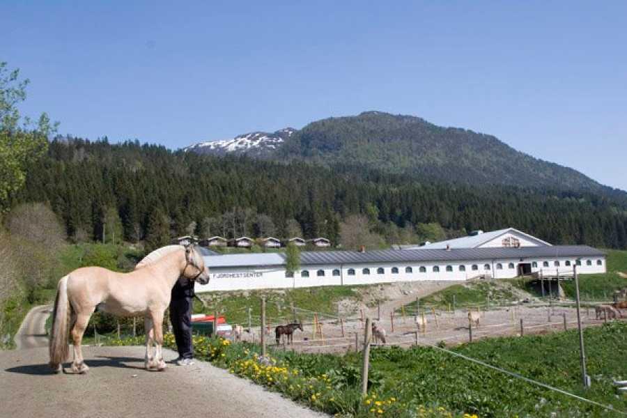 Norsk Fjordhestsenter Führung durch das Norwegische Fjordpferdcenter