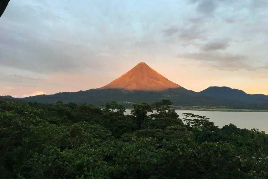 Lizard Tours Arenal Volcano Tour
