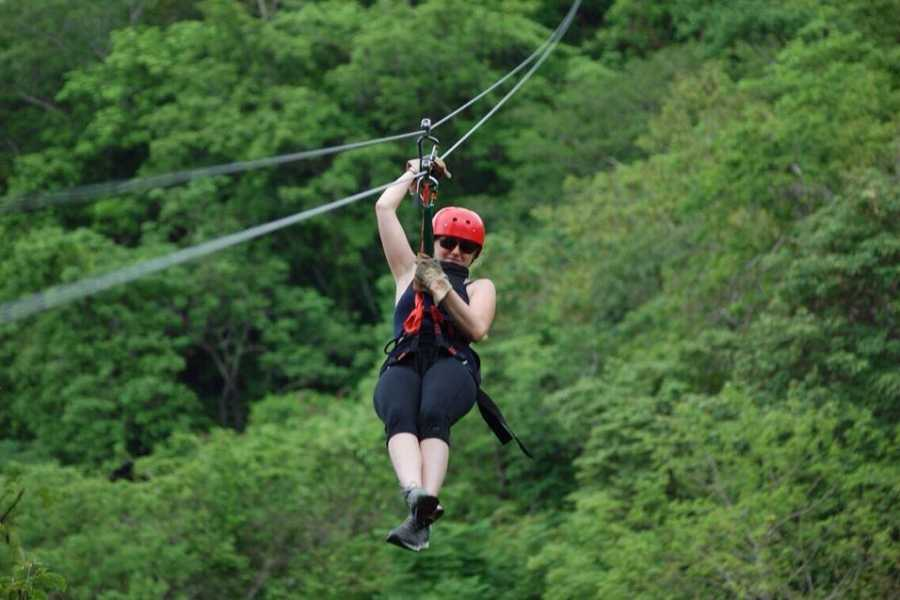 Lizard Tours Zip-Line around the mountains!