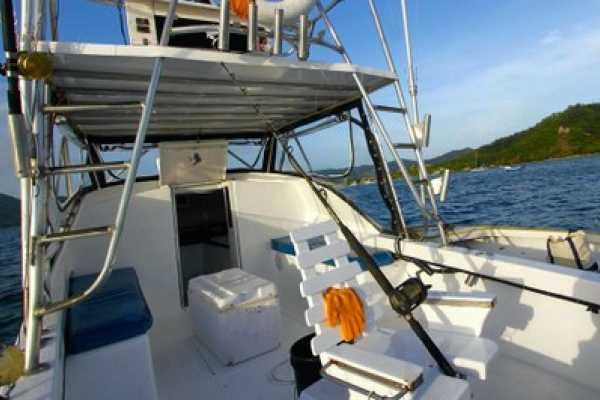 29' Sport Fishing Boat
