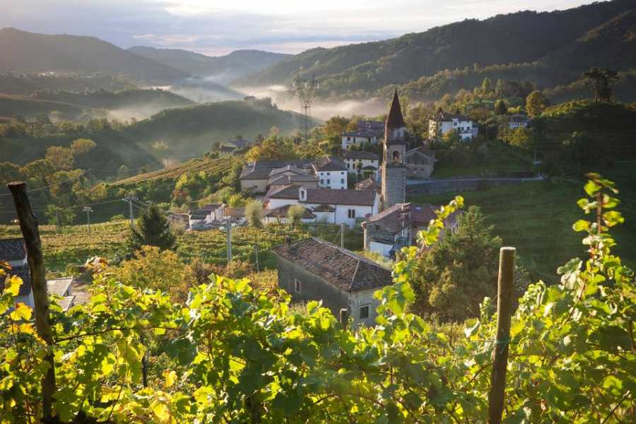 The Italian Tours Northern  Adriatic: Scents & Flavours