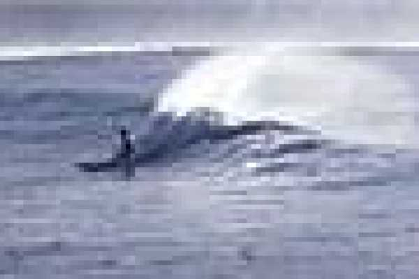 1.5 hour Surf Lesson at Wailua Bay