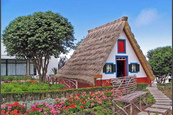"""7 Days Madeira Island Small Group Tour """"The Colors of Madeira"""""""