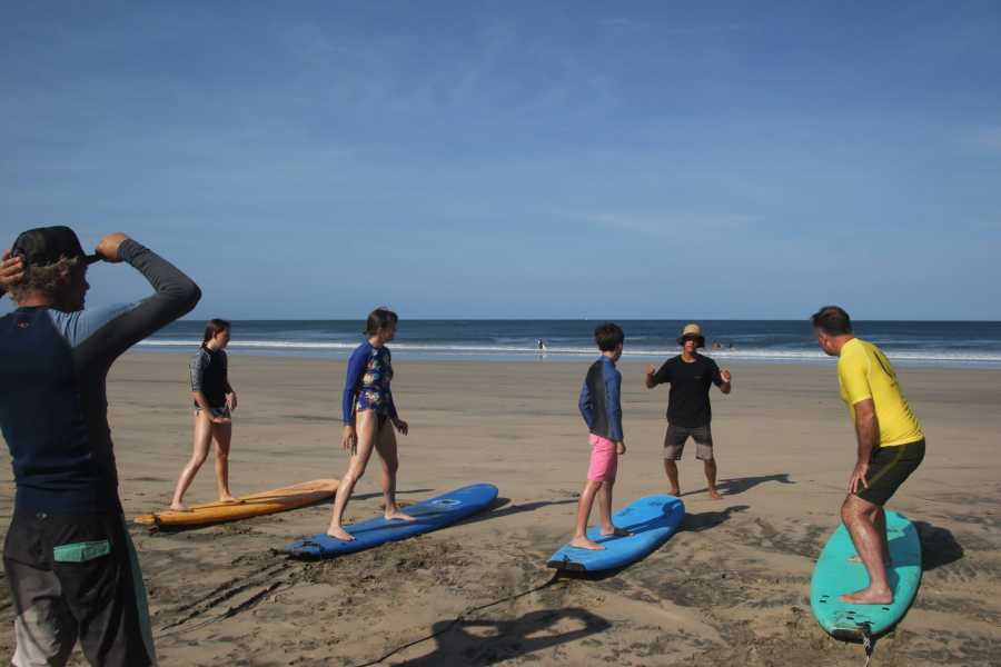 Lizard Tours Surf Lessons