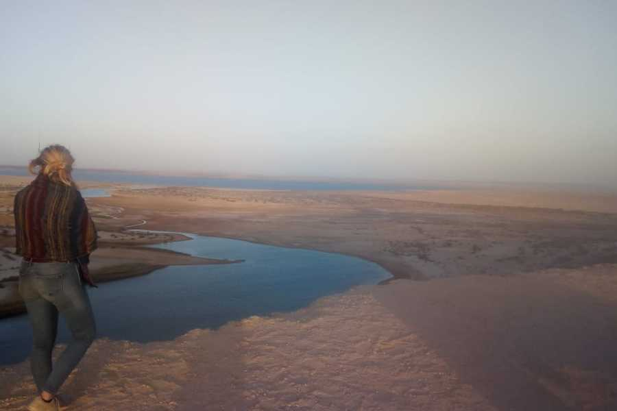 Marsa alam tours 3 days trip White desert and wadi el Hitan from Cairo