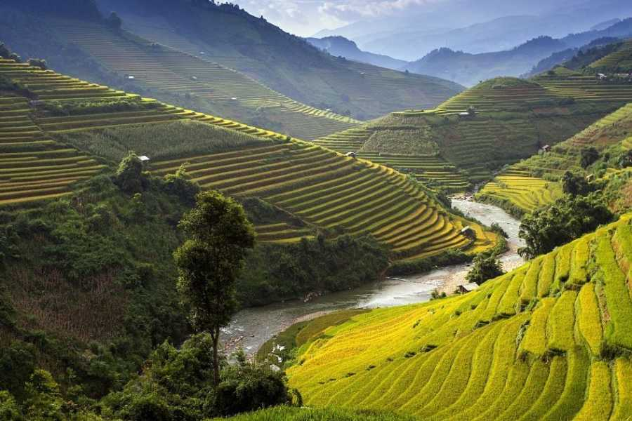 OCEAN TOURS North Vietnam Essential