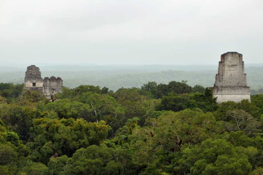 Gem Trips 04:25 Tikal Tour privado de Amanecer desde Jungle Lodge Tikal