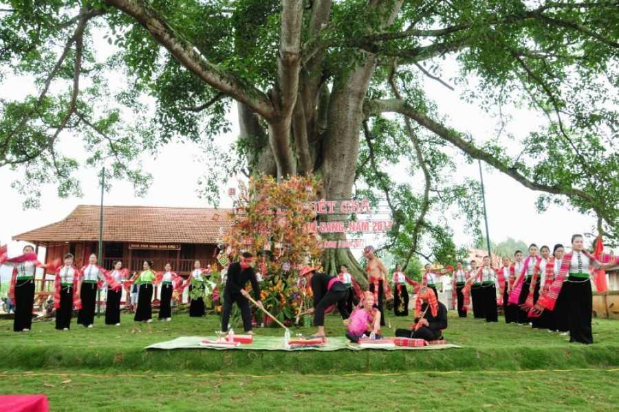 Vietnam 24h Tour Tour Hà Nội Mộc Châu 2 ngày 1 đêm: Lễ Hội Hết Chá đặc sắc người Thái, Sơn La