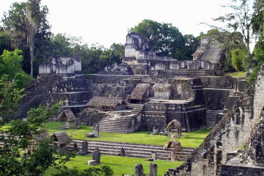 Gem Trips 02:40 Tikal Tour privado de Amanecer desde Hotel Bolontiku
