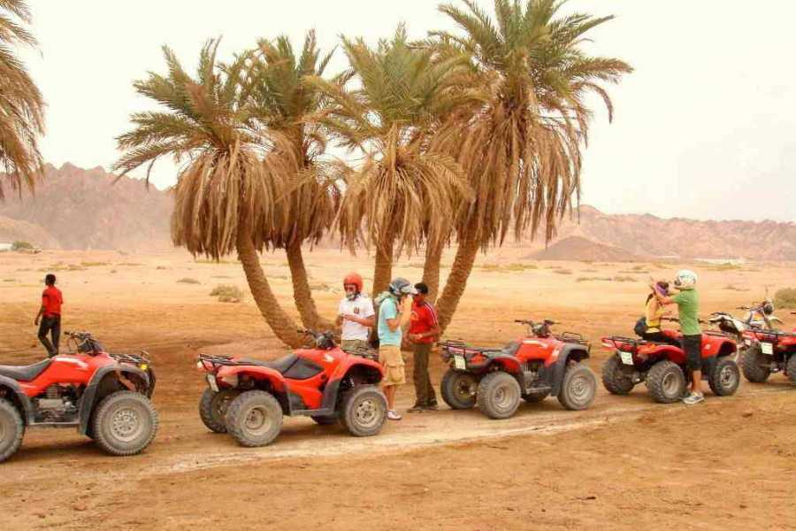 Excursies Egypte Afternoon Quad Bike Safari Excursion from Makadi