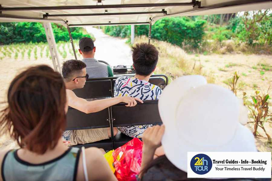 Vietnam 24h Tour Tour khám phá đảo Lý Sơn - Quảng Ngãi 6N5Đ