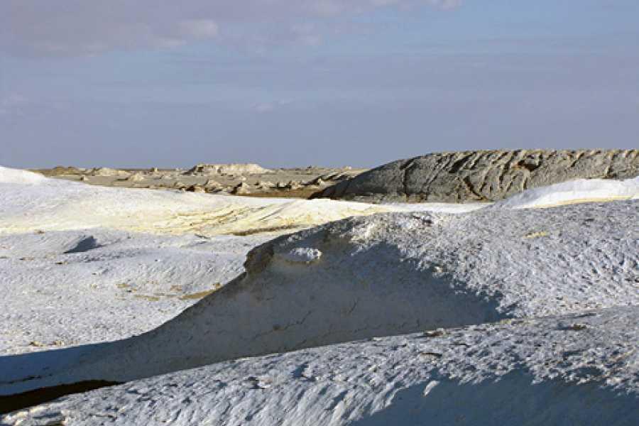 Excursies Egypte Excursion de 3 jours dans le désert blanc et Wadi el Hitan