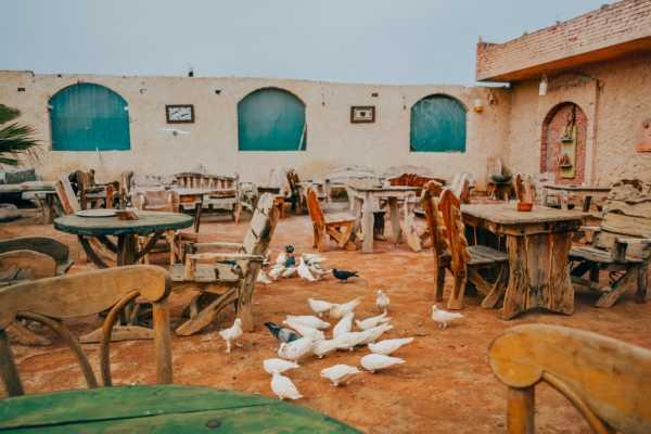 3 Days Trip toSiwa oasisfrom Cairo