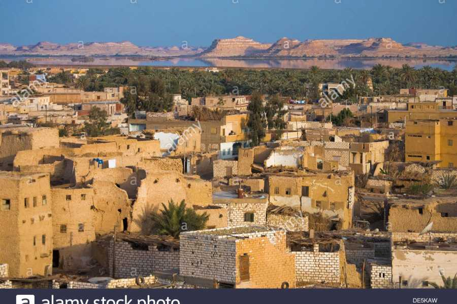 Excursies Egypte 3 days tour package to Siwa oasis from Cairo,
