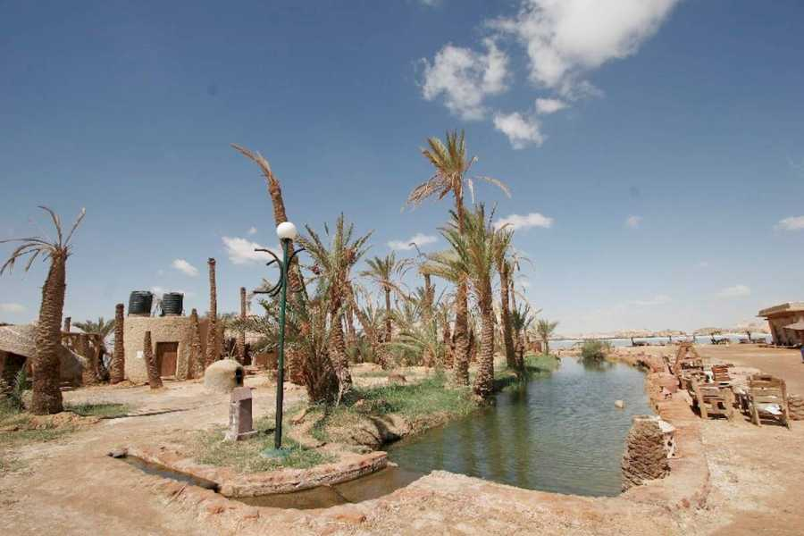 Excursies Egypte 3 days tour package to Siwa oasis from Cairo