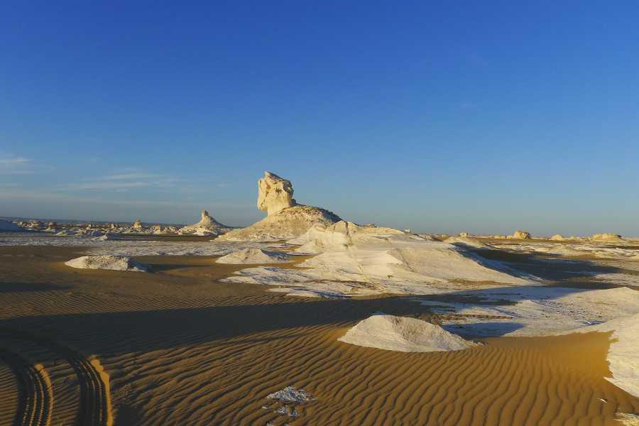 Excursies Egypte 3 day trip toBahariya Oasisandwhite desertfrom Cairo