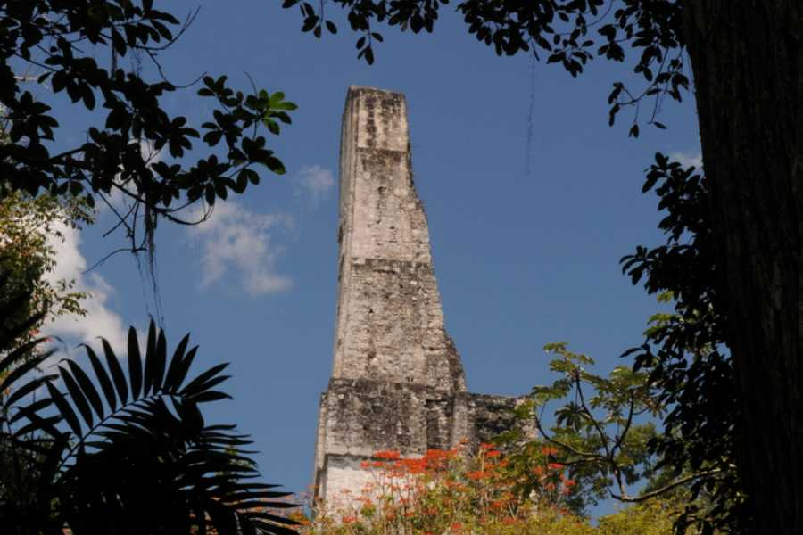 Gem Trips 11:55 Tikal Sunset Tour in Small Group from Tikal