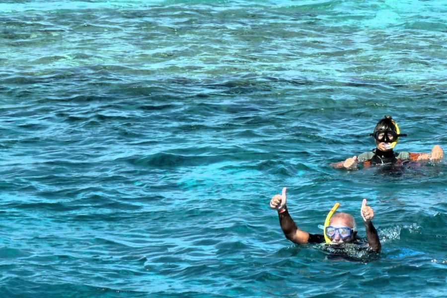 Excursies Egypte Diving trip to Satayh Dolphin Reef from Marsa Alam