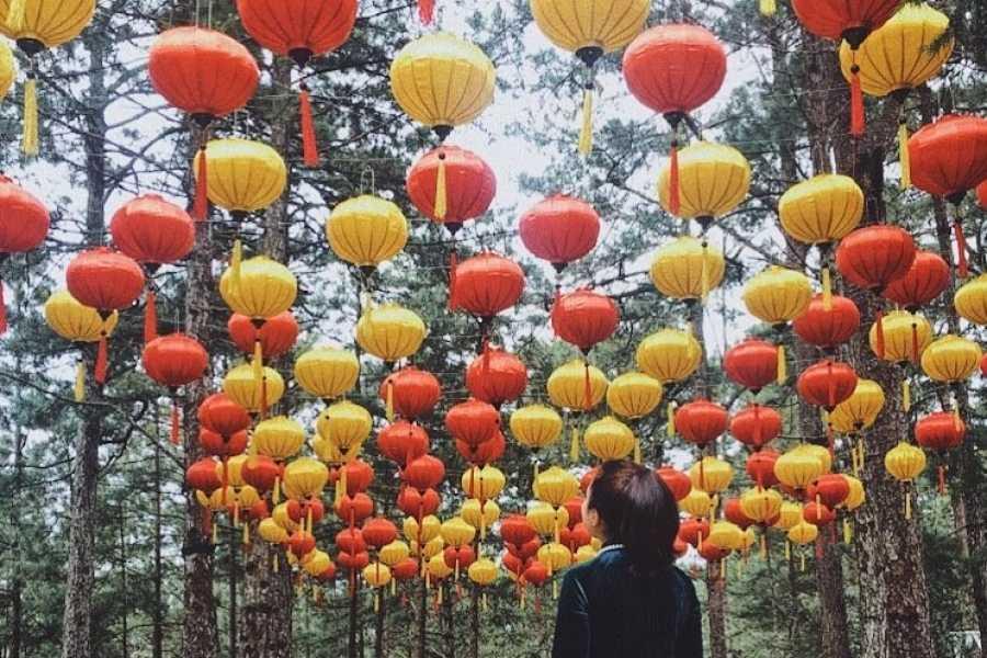 Vietnam 24h Tour Tour Nha Trang - Đà Lạt 5 ngày 4 đêm: Thành phố hoa