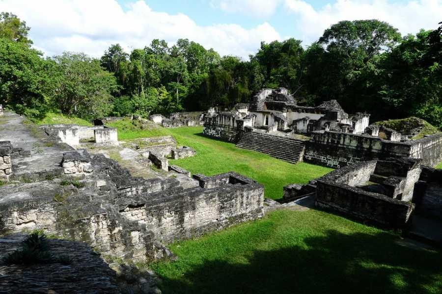 Gem Trips 03:15 Tikal Tour de Amanecer en grupo pequeño desde Villa del Lago