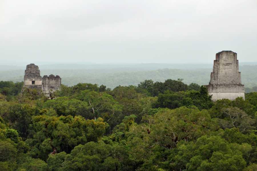 Gem Trips 10:30 Tikal Tour privado de Atardecer desde Casa Amelia
