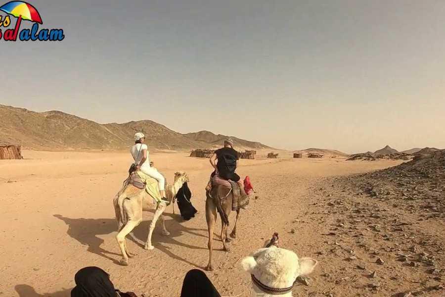 Excursies Egypte Safari matinal dans le désert de Makadi en quad