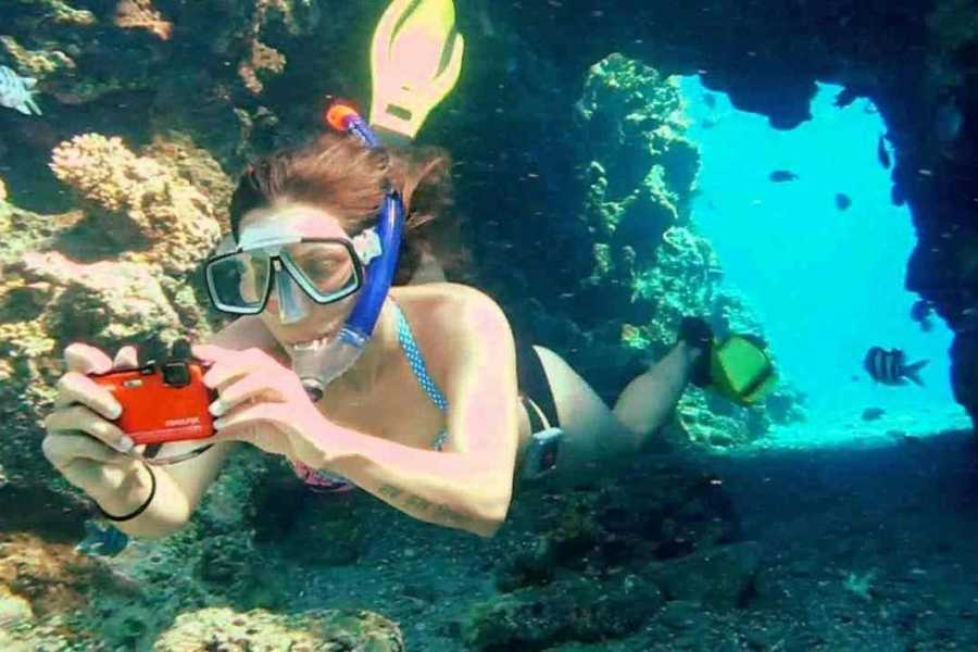 Excursies Egypte Abu Dabab day Snorkeling tour from Soma Bay