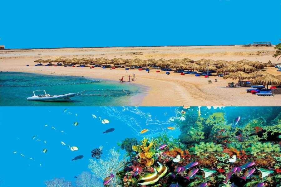Excursies Egypte Sharm El Naga Bay Snorkeling Trip From Soma Bay