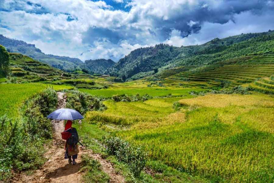 Friends Travel Vietnam Real Sapa Experience 2D-1N  | Start  & End in Sapa