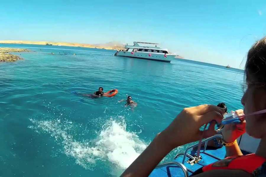 Excursies Egypte Snorkelingtrip at Port Ghalib Marina from Portghalib.