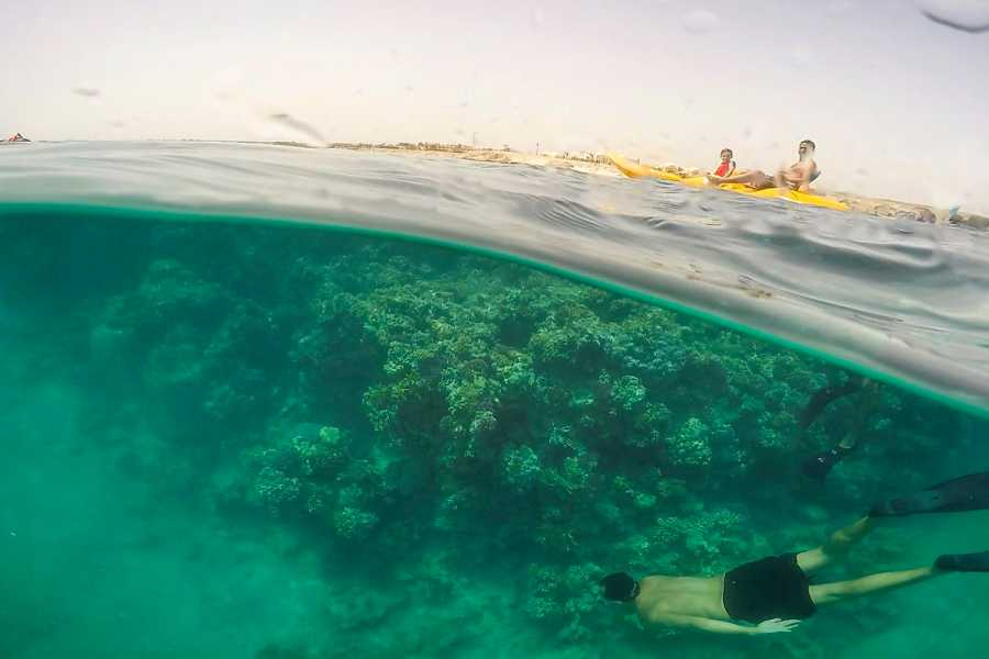 Excursies Egypte Sharm El Luli Snorkeling Tours From Port Ghalib