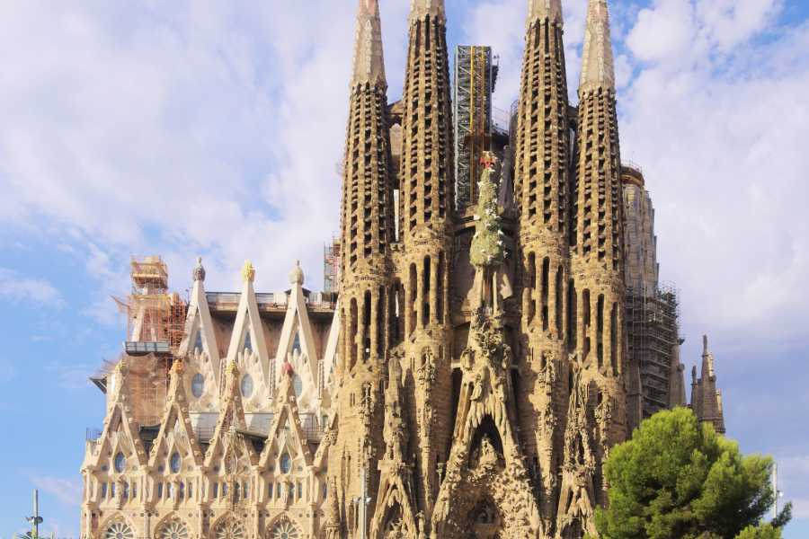 NHUE Sagrada Familia: Visite guidée sans file d'attente