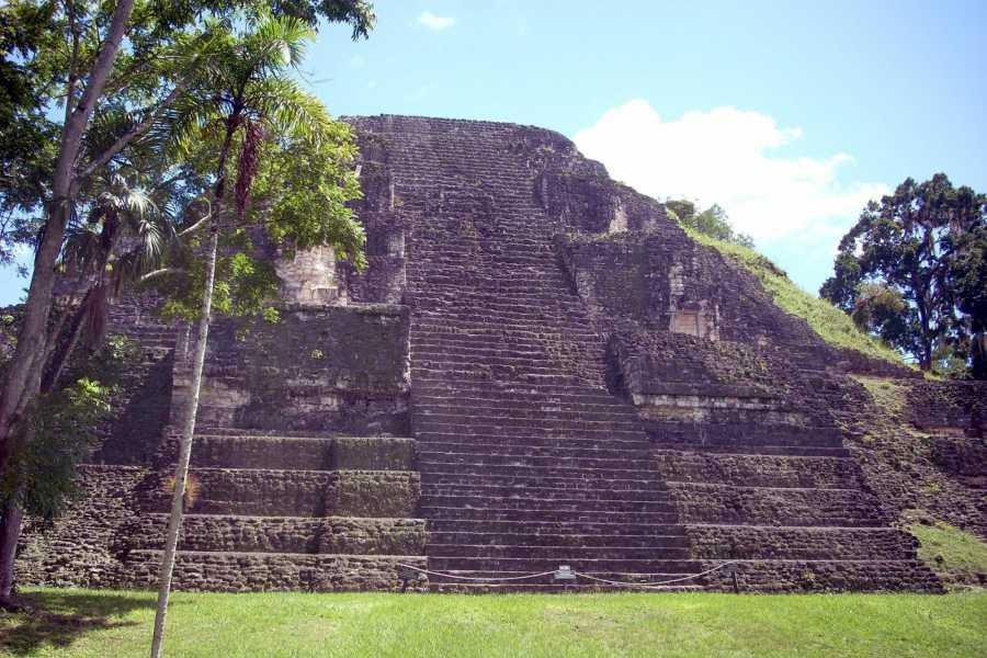 Gem Trips 04:25 Tikal Tour privado de Amanecer desde Jaguar Inn Tikal